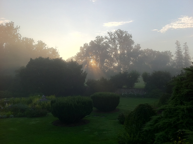 Oak Hill gardens with fog