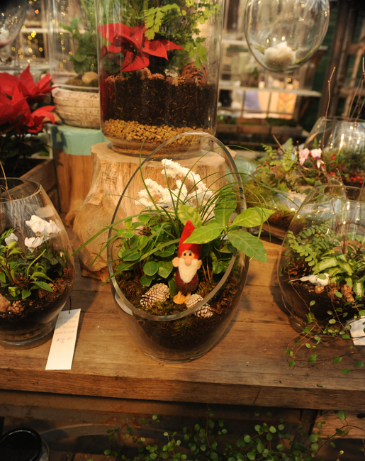 Christmas terrarium at Terrain