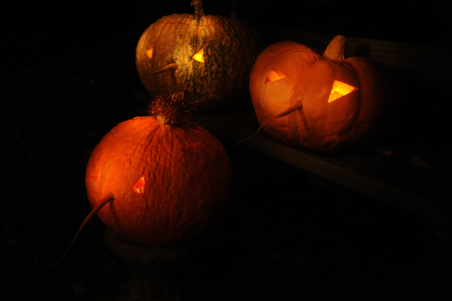Carved pumpkins 2