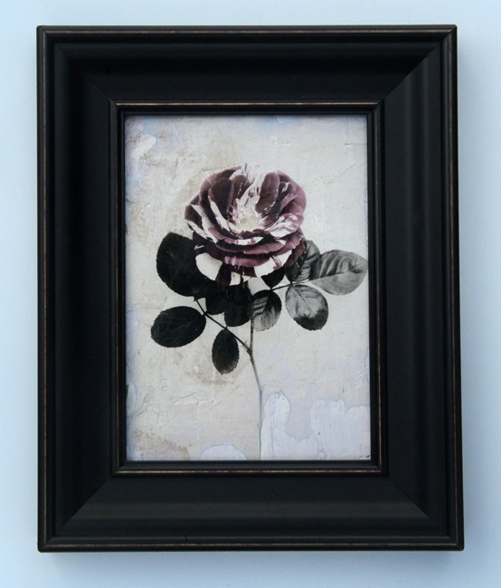 Striped rose plaster transfer