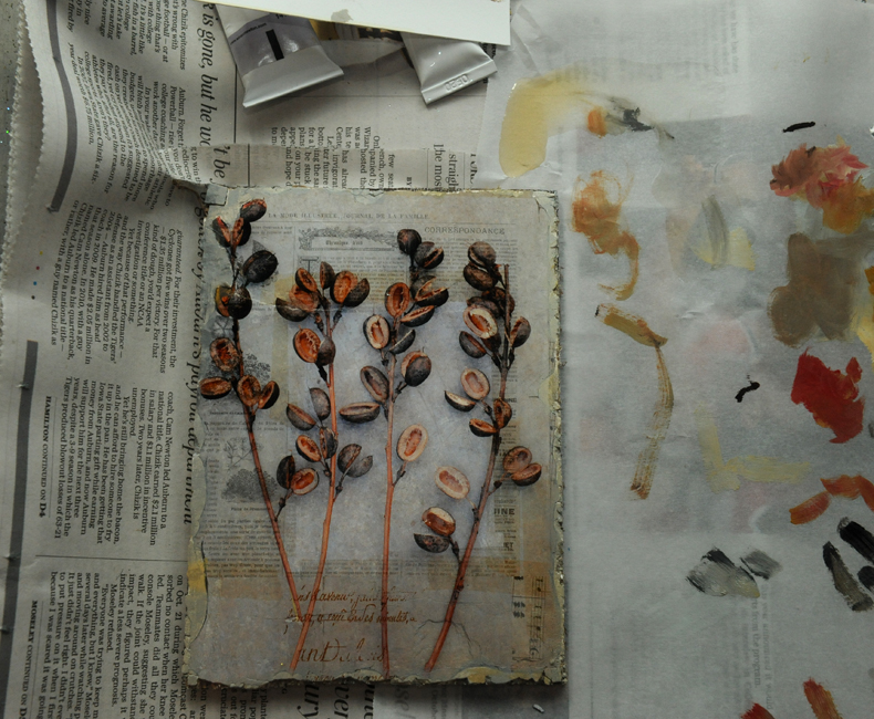 Plaster transfer of baptisia seed pods