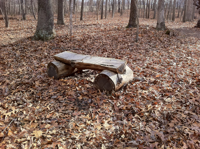 Seat in woods