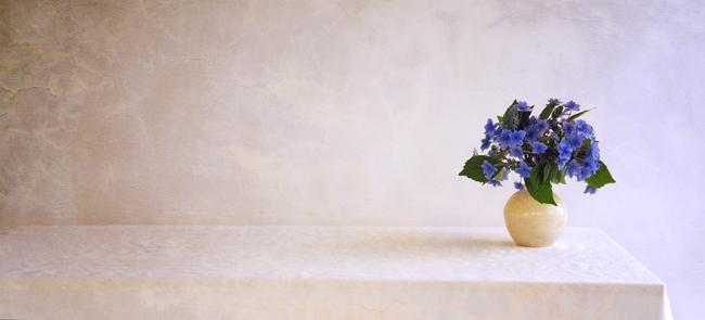 Hydrangea 'Tokyo Delight' in vase