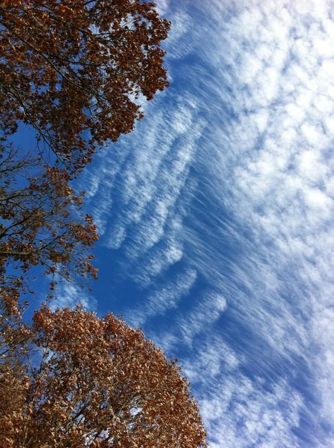 November clouds