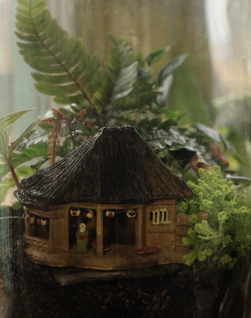 Terrarium with small Japanese hut