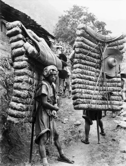 Tea carriers