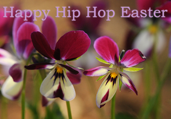 Happy Hip Hop Easter
