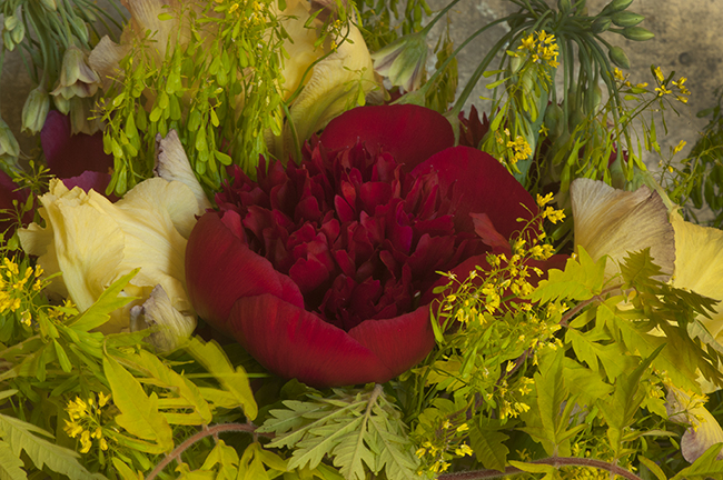 Flower arrangement with Peony 'Red Charm'