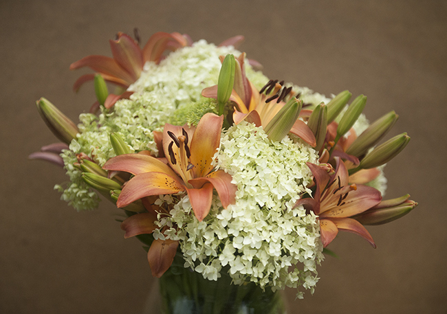 Flower arrangement with Lilium 'Royal Sunset' and Hydrangea 'Annabelle'