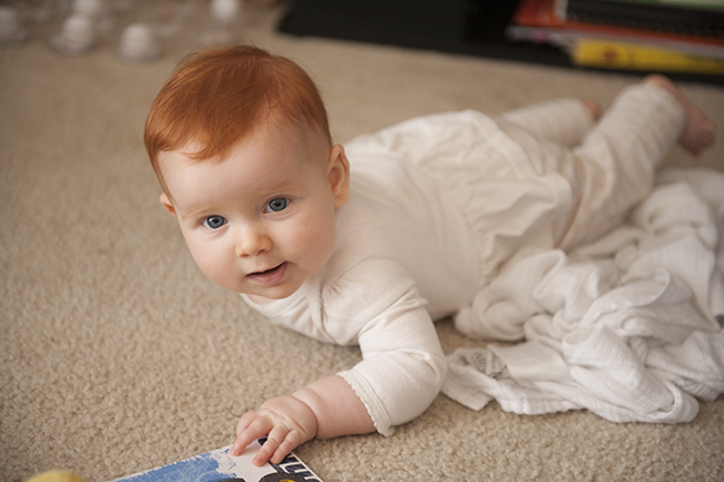 Juniper at 6 months old 4
