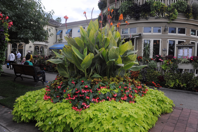 Niagara by the Lake corner plantings