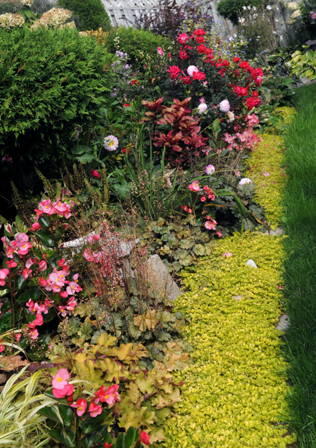 Mix of annual an perennial plantings in Canadian garden