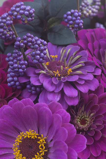 Flower arrangement with callicarpa and zinnia