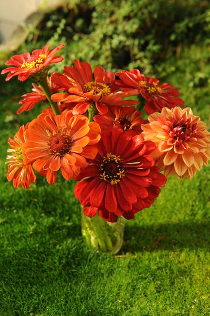 Flower arrangement in orange