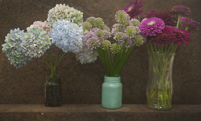 Cut flowers of summer
