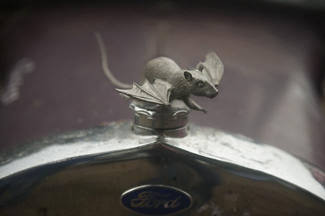 Fly rat hood ornament