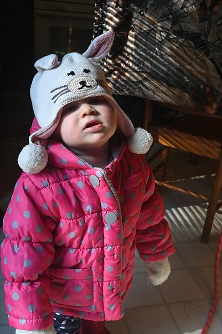 Juniper with winter coat