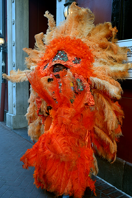 New Orleans Mardi Gras Indian costume