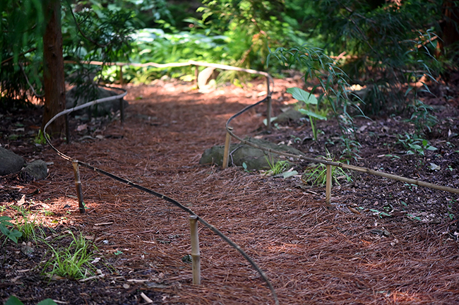 Walkway with bamboo staking for edge