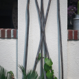 Tall branches for vine support