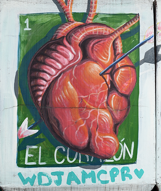 Anatomical heart Mexico City