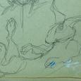 Drawing the rabbit falling